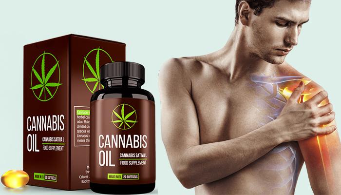 Cannabis Oil: obnovuje chrupavkovou tkáň a klouby
