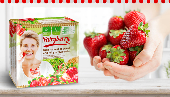 FairyBerry: neuvěřitelná úroda velké a chutné jahody již za 1 měsíc!