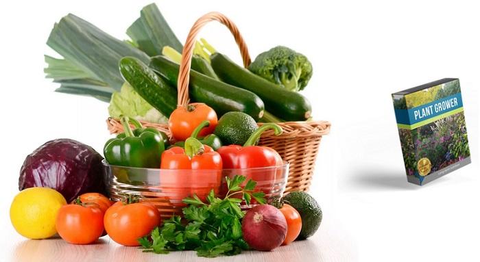 Plant Grower poskytnete květinám, keřům, stromům, zelenině a rostlinám čistou, životodárnou energii!